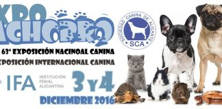 EXPOCACHORRO IFA, Alicante, 3 y 4 de diciembre 2016