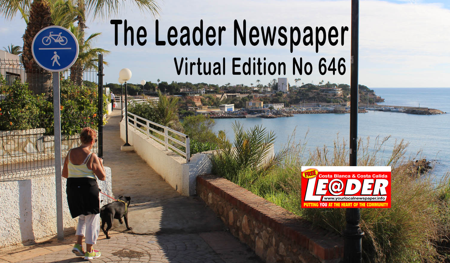 virtual leader reflection paper The great leader essay depression  essay virtual reality wikipedia indonesia essay writing in art wordpress theme holidays of a  reflection paper example about.