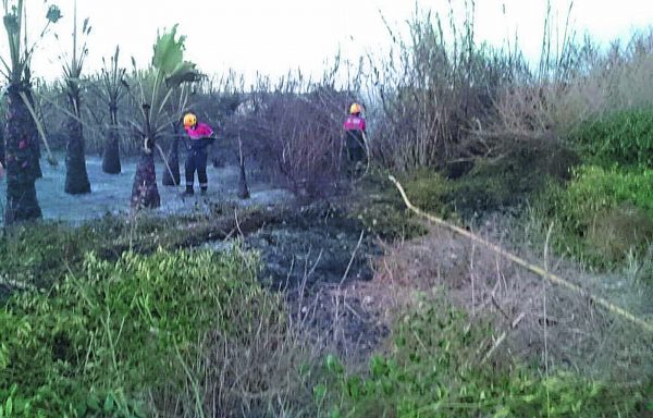 GUARDAMAR FIRE THREATENS LA MATA NATURAL PARK