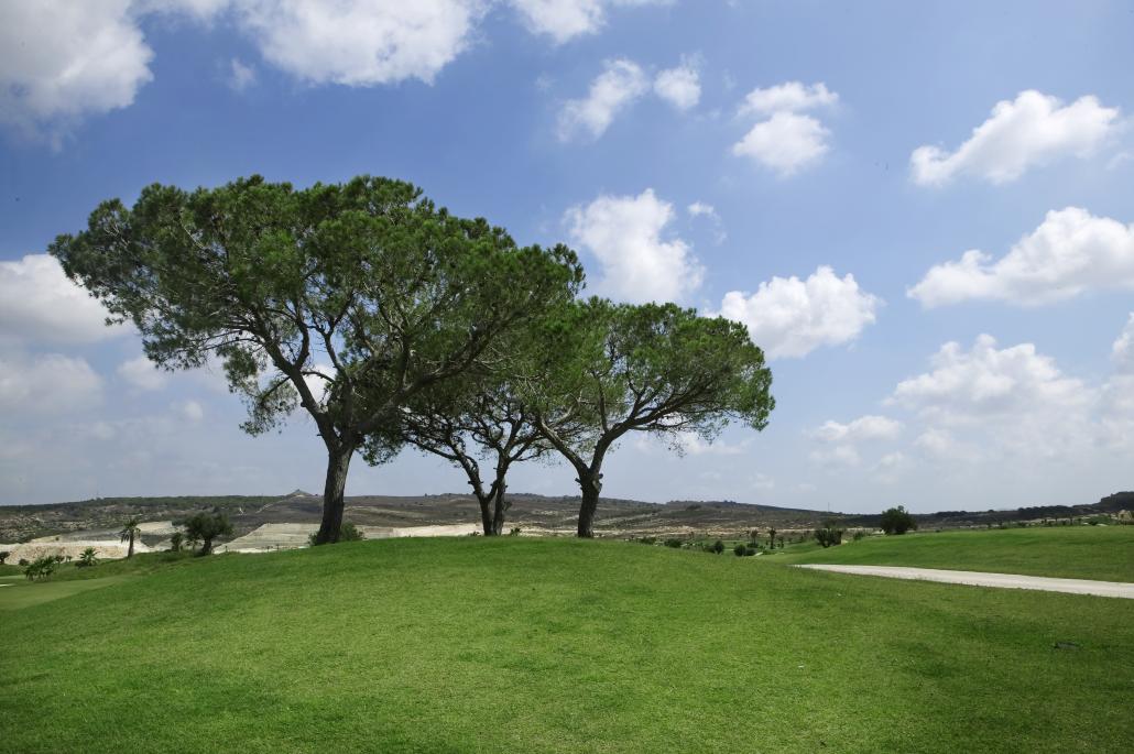 'Mike Probert talks Golf – 30 Dec 17