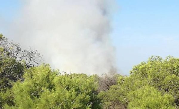Guardamar arsonist sets third fire in four days