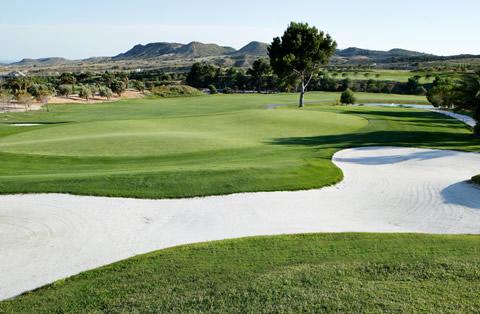 Lo Crispin Golf Society - Alenda 9th. January 2019