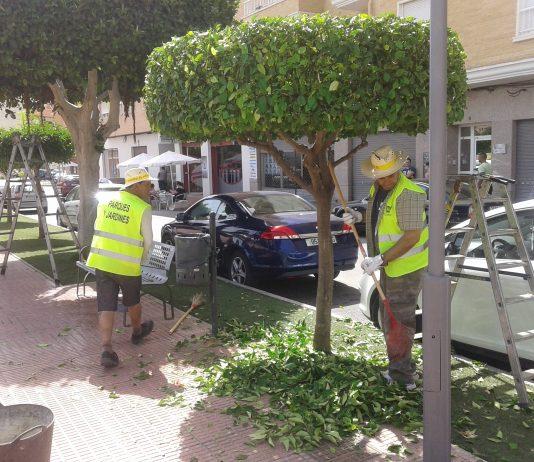 Orihuela Council lease vans to move employees from city to coast
