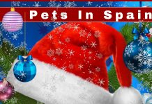 Pets in Spain Fayre