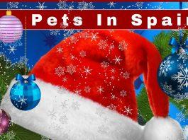 Pets in Spain Fayre