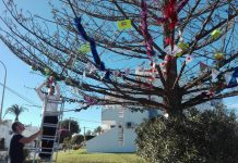 Christmas tree celebrates Diversity of Orihuela Costa
