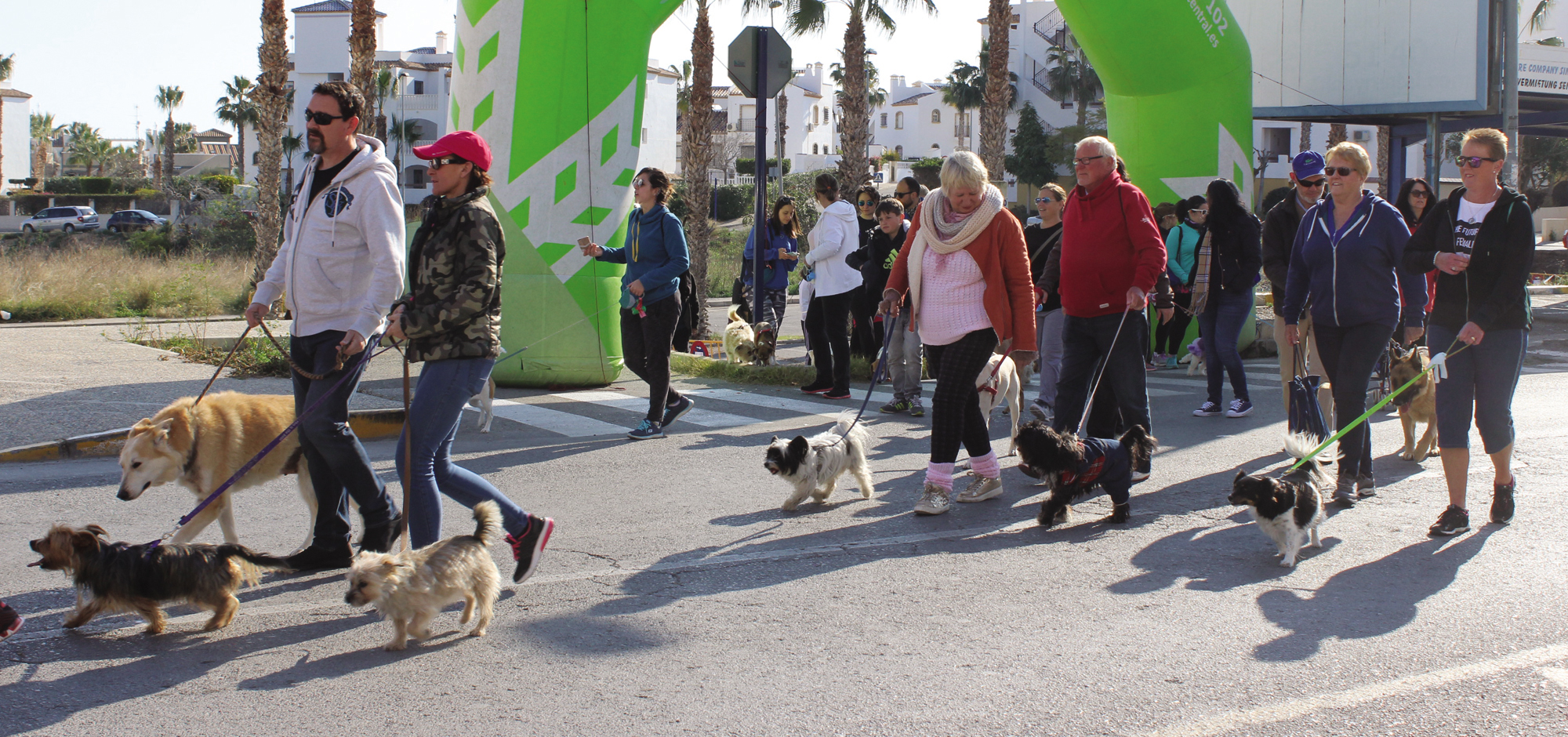 Walking the walk for Animal Welfare