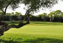 Marabu Golf Society