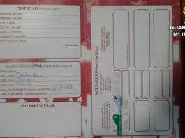 Animal dealer investigated in Orihuela