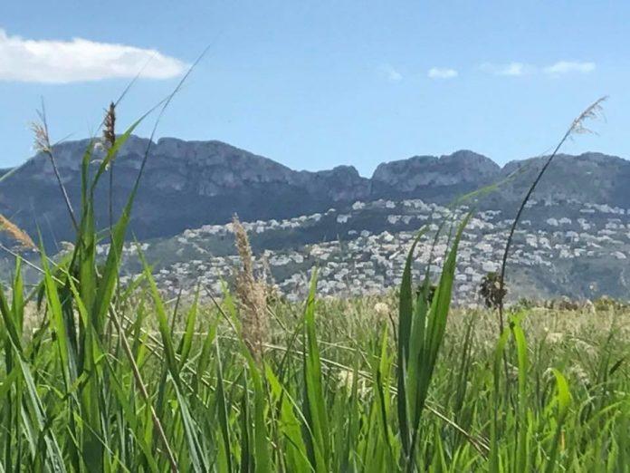 EU Parliament Probes Pollution of Monte Pego Nature Park