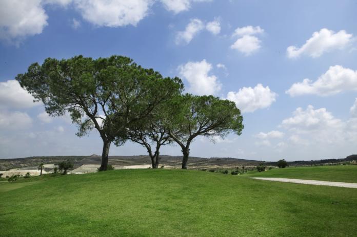 San Miguel Golf Society Vistabella 23rd Jan, 2019