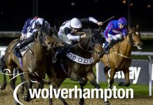 APEX Predator (7.45) is set to strike at Wolverhampton's evening meeting on Saturday
