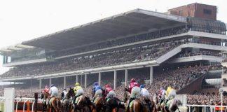Cheltenham festival boost as McCain returns after equine flu virus