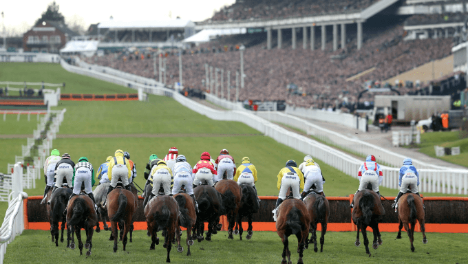 Irish Cheltenham Festival record 825 entries makes it harder for English trainers to compete