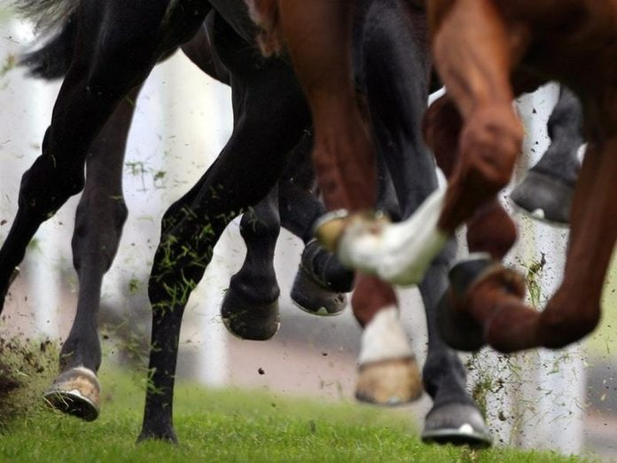 The outbreak has caused concern with the Cheltenham Festival set to get underway in March.
