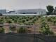 Compensation for San Pedro families living by Asphalt Factory