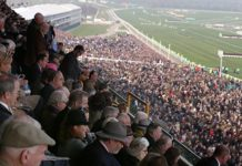 1,828 five horse winning accumulator at Cheltenham Festival for Leader tipster