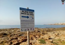 Judge confirms Torrevieja canine beach