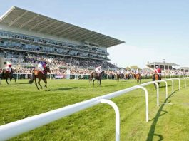 Leader tip Auxerre wins Lincoln