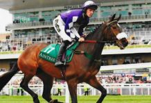 Lady Buttons heads to Aintree