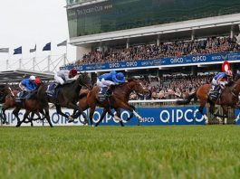 *Saturday's racing tips and news Online every Friday at www.theleader.info
