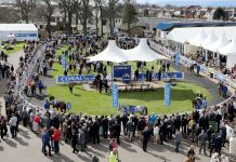 Scottish Grand National at Ayr
