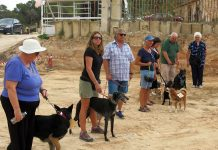FUN DOG SHOW at Finca Villamartin on Saturday