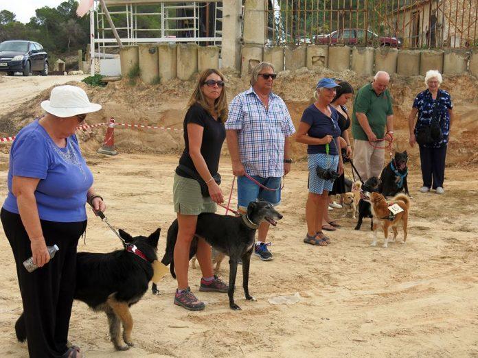 FUN DOG SHOW at Finca Villamartin on Saturday