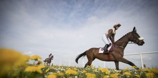 O'Brien and Moore to shine at Newmarket