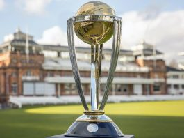 Cricket World Cup Final Preview