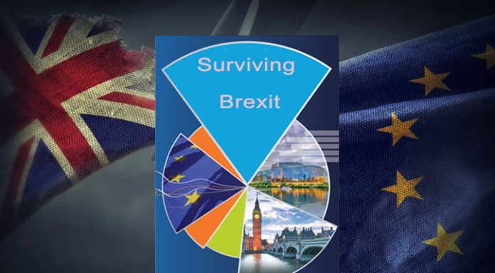How Your Business Can Survive Brexit