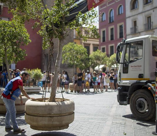 "Torrevieja security boosted by ""antiterrorist"" planters"