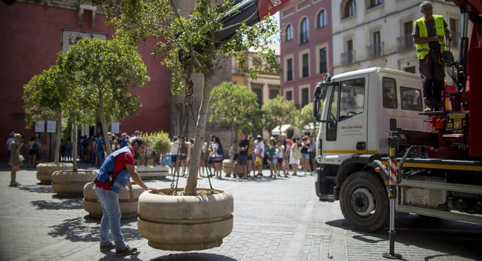 """Torrevieja security boosted by """"antiterrorist"""" planters"""