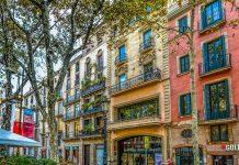 Image Source: https://pixabay.com/photos/barcelona-spain-facade-tree-street-2088158/