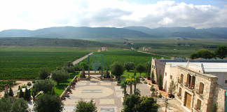 La Serrata Winery, in the Alicante province