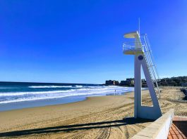 Professionals Call for Extension of Lifeguards