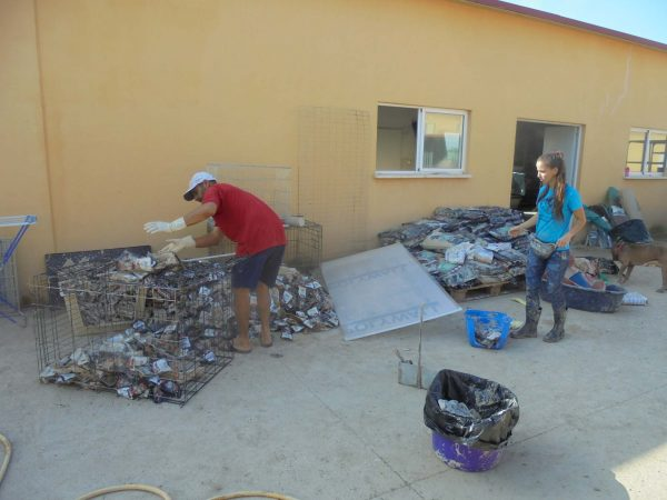 WATER DAMAGED FOOD IN THE ASOKA ORIHUELA REFUGE