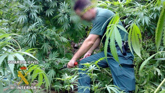Drugs bust near childrens playground