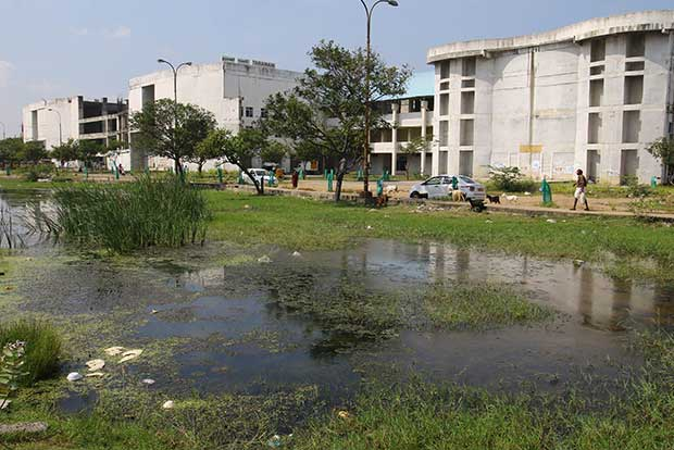 Department of Health highlights risks of stagnant water