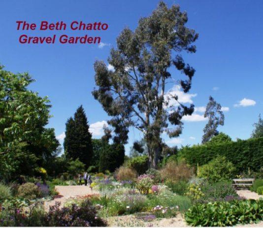 Darwinian Gardeners - Humanists of Murcia