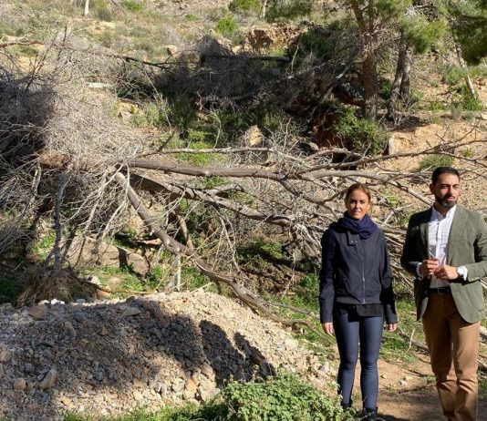 PP deputy, Elisa Díaz, and the president of the PP of Orihuela, and Councillor for the Environment, Dámaso Aparicio.