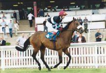 Jockey Gary Gibson.