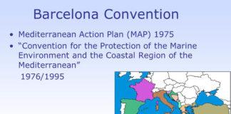 Spanish Government's proposal to incorporate Mediterranean cetacean migration