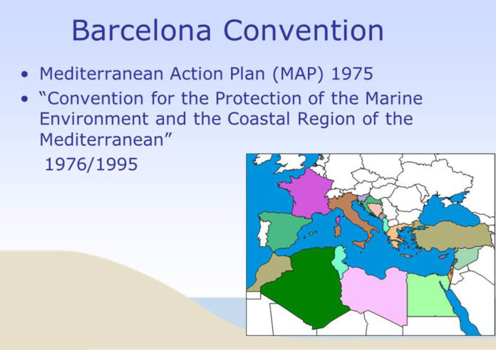 Spanish Government's proposal to incorporate Mediterranean cetacean migration