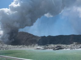 No signs of life on New Zealand volcano
