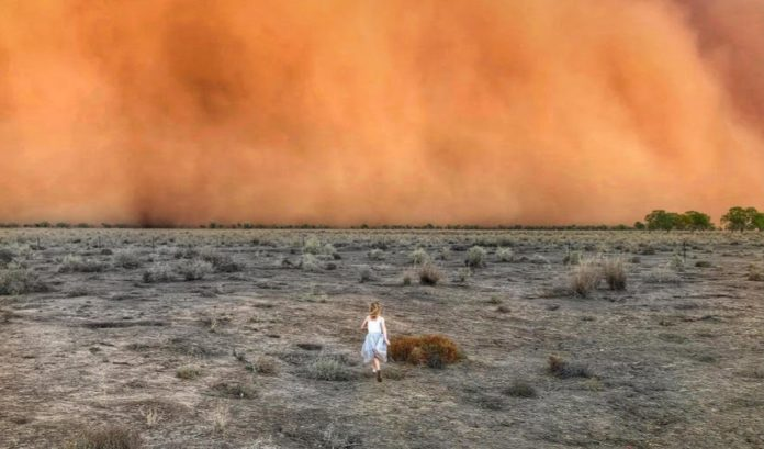 During January in Canberra, Australia, a 300-kilometer, 186 miles wide cloud of red dust (pictured) was carried by wind gusts up to 107 kilometers, 66mph.