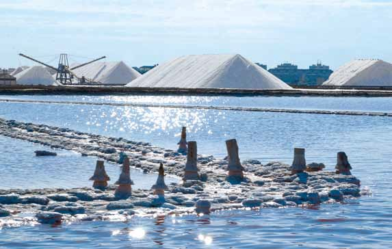 Torrevieja salt production boosted by Storm Gloria