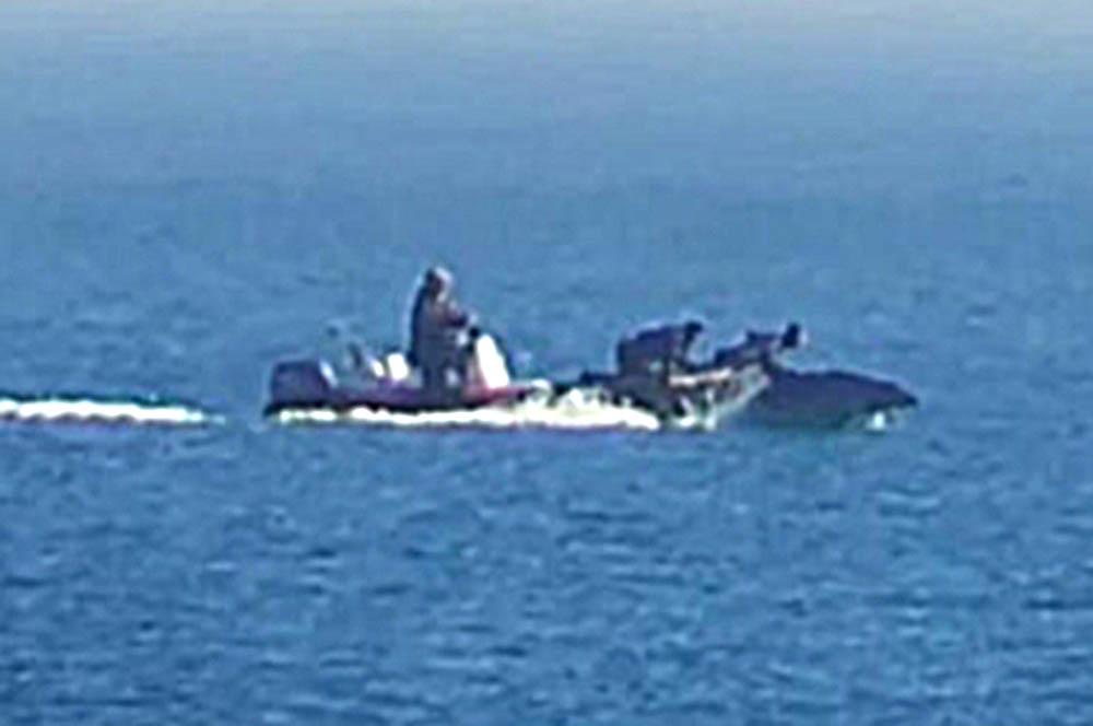 Dinghy Dolphin 'harrassers' face 200,000€ fine