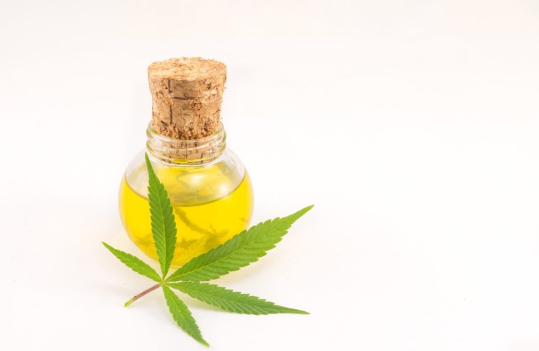 When is the Best Time to Take CBD Oil and 5 Other FAQs About CBD