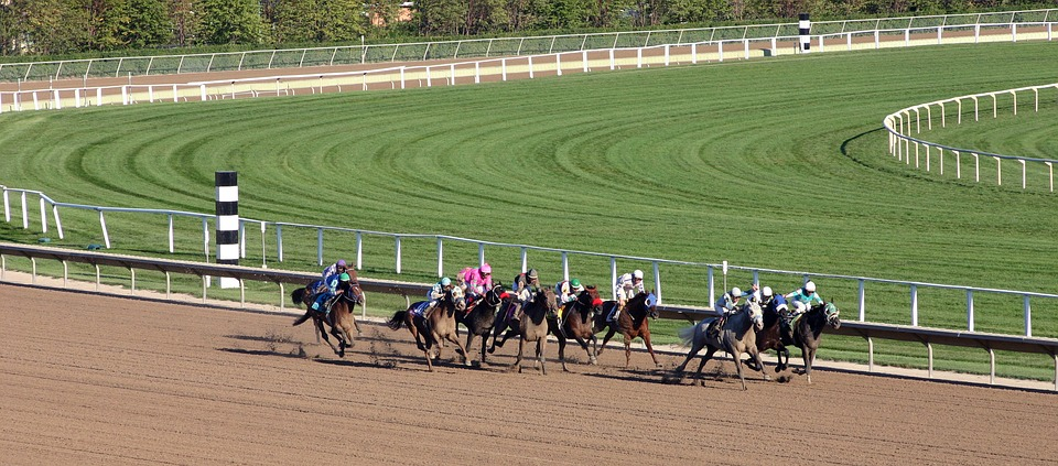 4 Practical Ways To Pick A Horse Race Track Property